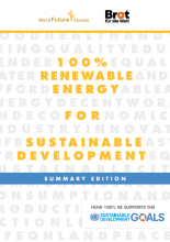 RE SDG summary